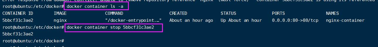 【Docker】4. 操作容器